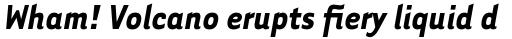 Tarzana Narrow Bold Italic sample
