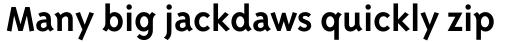 Triplex Sans Bold sample