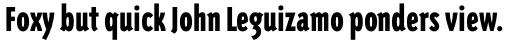 Triplex Condensed Sans Black sample