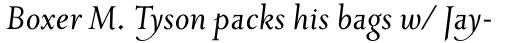 Priori Serif Italic sample