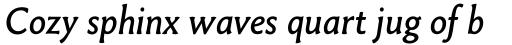 Paradigm Pro Italic sample