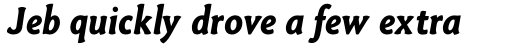 Paradigm Pro Bold Italic sample