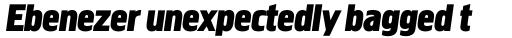 Megaphone Bold Italic sample