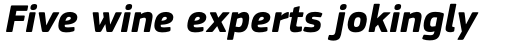 PF Square Sans Pro Bold Italic sample