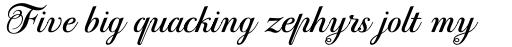 PF Bodoni Script Pro Bold sample