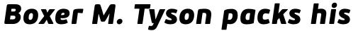 PF Beau Sans Pro Black Italic sample