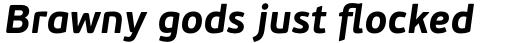PF Beau Sans Pro Bold Italic sample