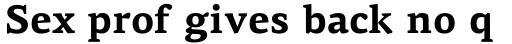 PF Centro Serif Pro Bold sample