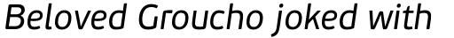 PF Beau Sans Pro Italic sample