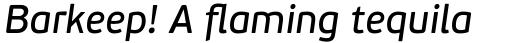 PF Beau Sans Pro Book Italic sample