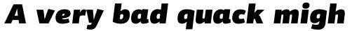 PF Centro Sans Pro UltraBlack Italic sample