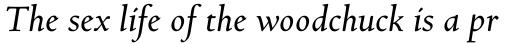 Bertham Pro Italic sample