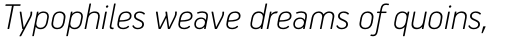 PF Handbook Pro Thin Italic sample