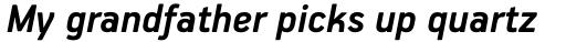PF Handbook Pro Bold Italic sample