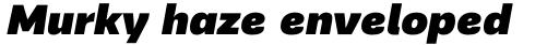PF Encore Sans Pro UltraBlack Italic sample