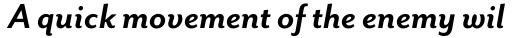Mr Eaves Sans Bold Italic sample