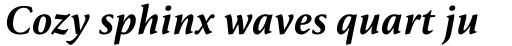 FF Reminga Pro Medium Italic sample