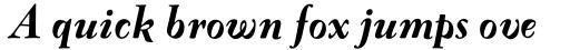 FF Oneleigh Pro Black Italic sample