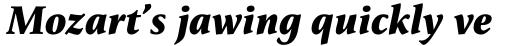 FF Reminga OT Bold Italic sample