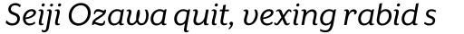 Mr Eaves XL Sans Italic sample