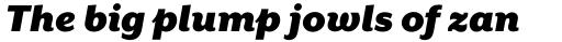 Mr Eaves XL Sans Ultra Italic sample