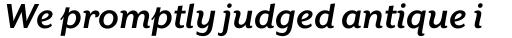Mr Eaves XL Sans Bold Italic sample