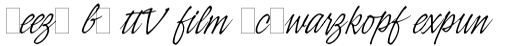 Indy Italic Alt sample
