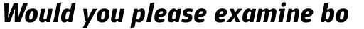 PF Bulletin Sans Pro Bold Italic sample
