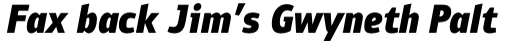 PF Bulletin Sans Pro Black Italic sample
