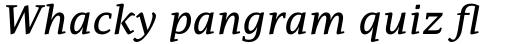 PF Adamant Pro Medium Italic sample