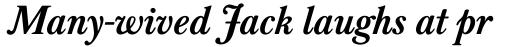 Baskerville Classico Bold Italic sample