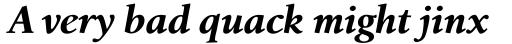 Birka Bold Italic sample