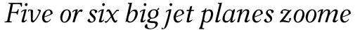 Carniola Italic sample