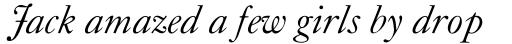 Caslon Classico Italic sample