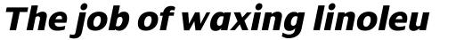 Dialog ExtraBold Italic sample