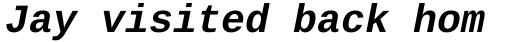 Ascender Sans Mono WGL Bold Italic sample