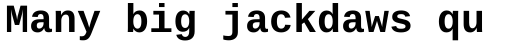Ascender Sans Mono WGL Bold sample