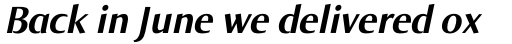 Norma Bold Italic sample