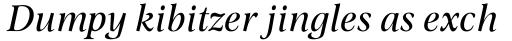 Omnibus Italic sample