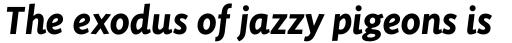 Sensibility Bold Italic sample