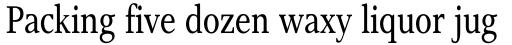 Res Publica Condensed sample