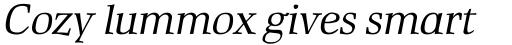 Rustika Italic sample