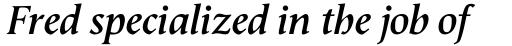 Semper Bold Italic sample