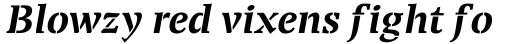 Transport Bold Italic sample