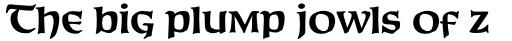 Connemara Old Style Pro Bold sample