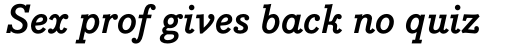 Bodoni Egyptian Pro Bold Italic sample