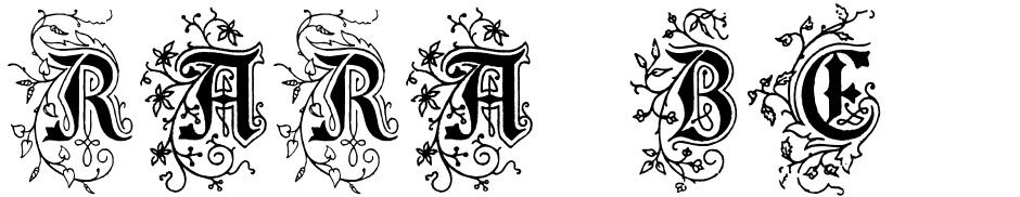 Click to view Rara Beleza font, character set and sample text