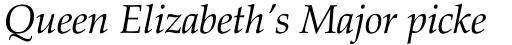 Zapf Calligraphic 801 Italic sample