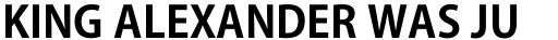 Ryo Gothic PlusN Bold sample