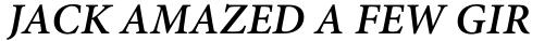 Adobe Hebrew Bold Italic sample
